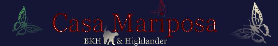 Banner Casa Mariposa
